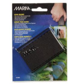 Marina Marina Algae Magnet - Large