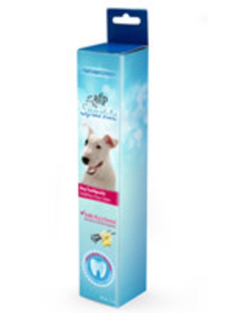 All Four Paws All for Paws Sparkle Toothpaste - Vanilla Ginger Flavour - 2.1oz