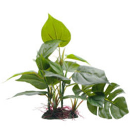 "Fluval Fluval Decorative Plants - Anubias - 20 cm (8"") with base"