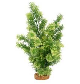Fluval Fluval Aqualife Plant Scapes White-Tipped Hottonia - 35.5 cm (14 in)