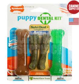 Nylabone Nylabone Puppy Dental Pack 4 Count Petite