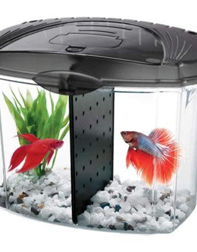 Aqueon Aqueon Betta Bowl Aquarium Kit - Black - 0.5 Gal