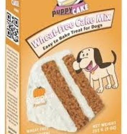 puppy cake Puppy Cake - Pumpkin Flavor