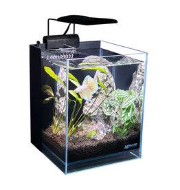 """Lifeguard Aquatics Lifegard Aquatics 45° Betta Low Iron Ultra Clear Aquarium - 2.65gal - 7.87""""x7.87"""""""