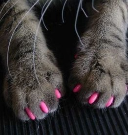 Softclaws Softclaws Feline T / Home Small Pink