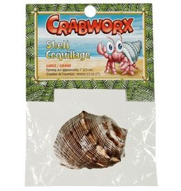 Crabworx Hermit Crab Growth Shells Large