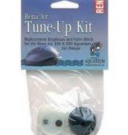 Rena 300G Tune-Up Kit