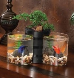 Elive Betta Cylinder and planter