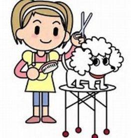 Grooming Dematting