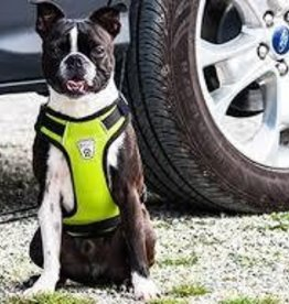 RC Pets RC Pets Vest Harness 2.0 Lime XXS