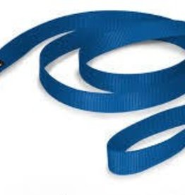 AK-9 AK-9 Single Layer Nylon Lead 1 X6' Blue