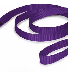 AK-9 AK-9 Single Layer Nylon Lead 1 X6' Purple