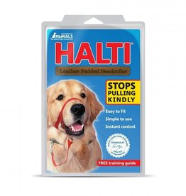 Halti Halti Padded Head Collar Size 4 Black