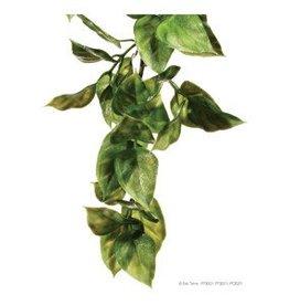 Exo Terra Exo Terra Jungle Plant - Amapallo - Small