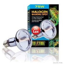 Exo Terra Exo Terra Halogen Basking Spot - 75 W
