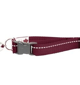 RC Pets RC Pets Primary Kitty Breakaway Collar Burgundy