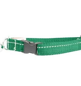 RC Pets RC Pets Primary Kitty Breakaway Collar Green