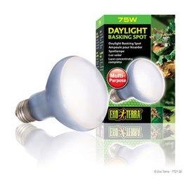 Exo Terra Exo Terra Daylight Basking Spot Lamp - R20 / 75 W