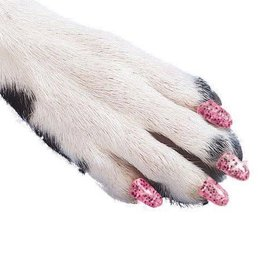 Softclaws Soft Claws Cat Pink Sparkle Small