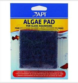 API API Algae Scraper Pad