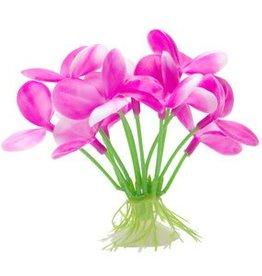 "Marina Marina Betta Pink Orchid - 2.75"""