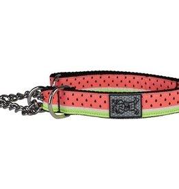 RC Pets RC Pets Training Collar Watermelon L