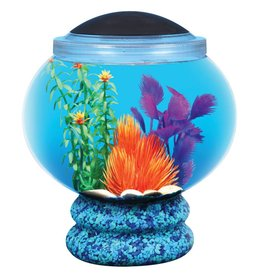 API API Betta Bowl with Pedestal Aquarium Kit - 1.6G