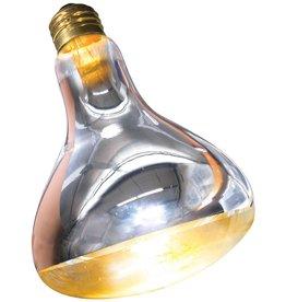 Zoo Med Zoo Med Repti Basking Spot Lamp - 250 W -1 pk