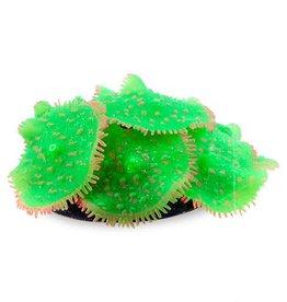 SPORN Ricordia Anemone Green
