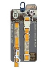 Arista Collar & Leash Set - Medium - Orange