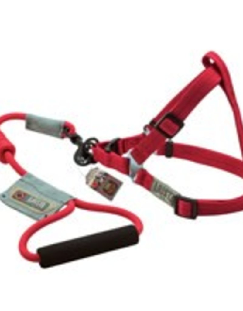 Arista Round Harness & Leash Set - Medium - Red