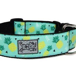 RC Pets RC Pets Wide Clip Collar M Pineapple Parade