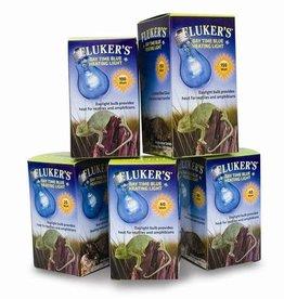 Fluker's Flukers Blue Daylight Bulb 25W