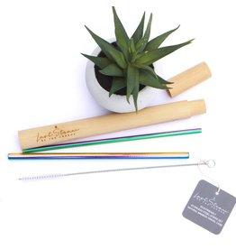 Last Straw 4 pc Straw Set Rainbow In Bamboo Case