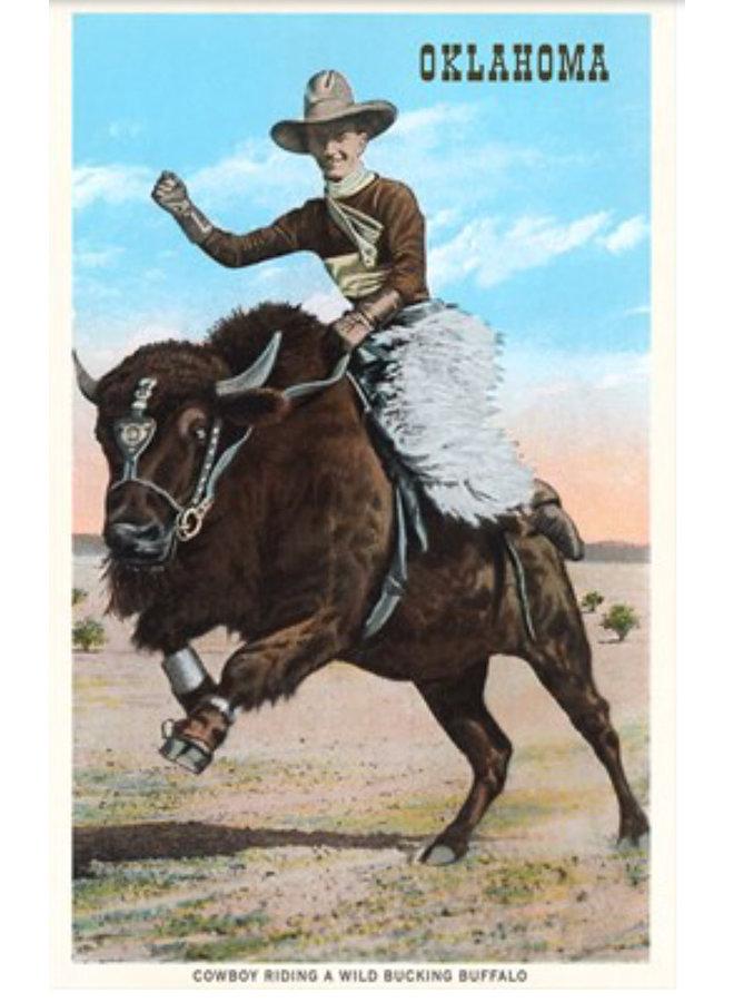 Cowboy Riding Buffalo Postcard
