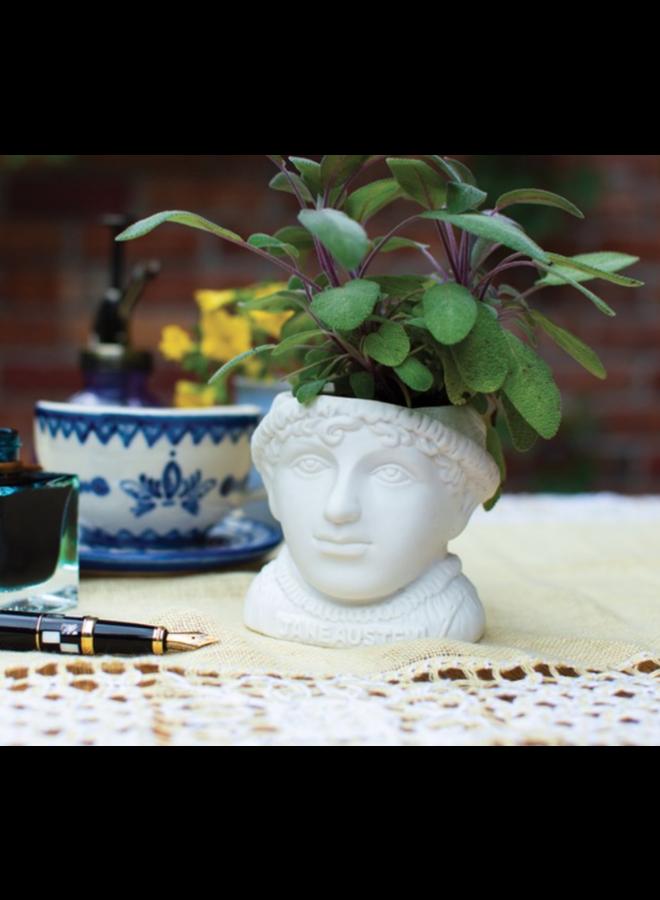 Jane Austen Planter