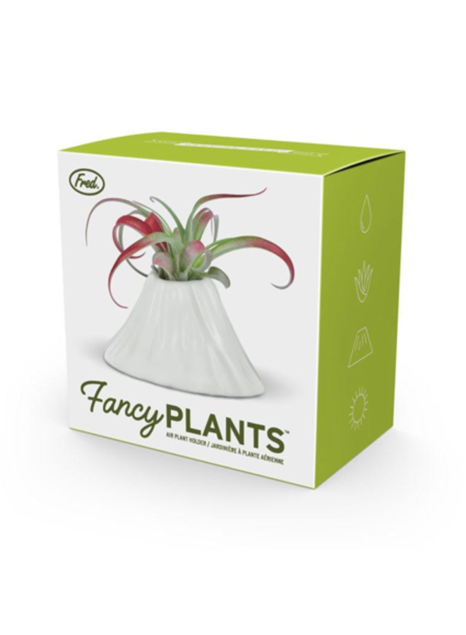 Fancy Plants - Volcano