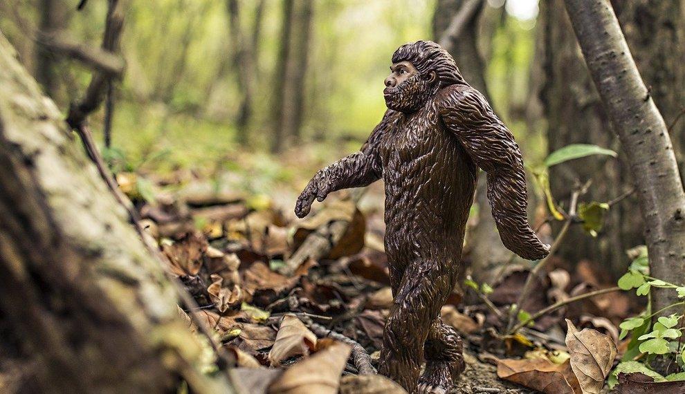 The urban legend of Bigfoot in Oklahoma