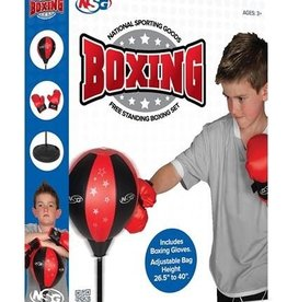 Boxing Floor Set with Gloves