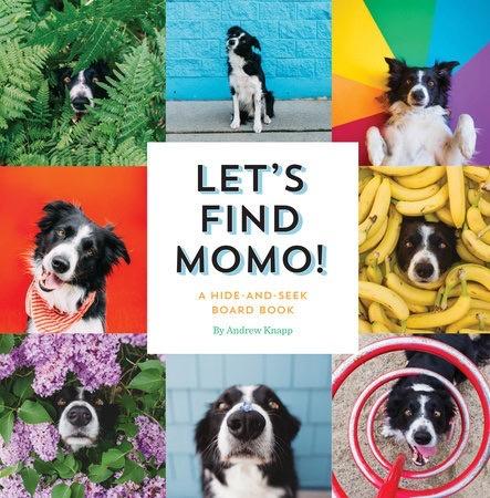 Let's Find Momo! Board Book