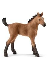 Schleich Quarter Horse Foal