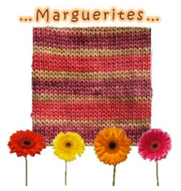 Biscotte & Cie Felix, Marguerites (Discontinued)