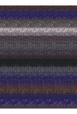 Noro Silk Garden Sock, Grey, Black, Purple color 358 (Discontinued)