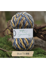 West Yorkshire Spinners Signature 4ply, Blue Tit 818