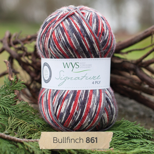 West Yorkshire Spinners Signature 4ply, Bullfinch 861