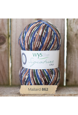 West Yorkshire Spinners Signature 4ply, Mallard 862