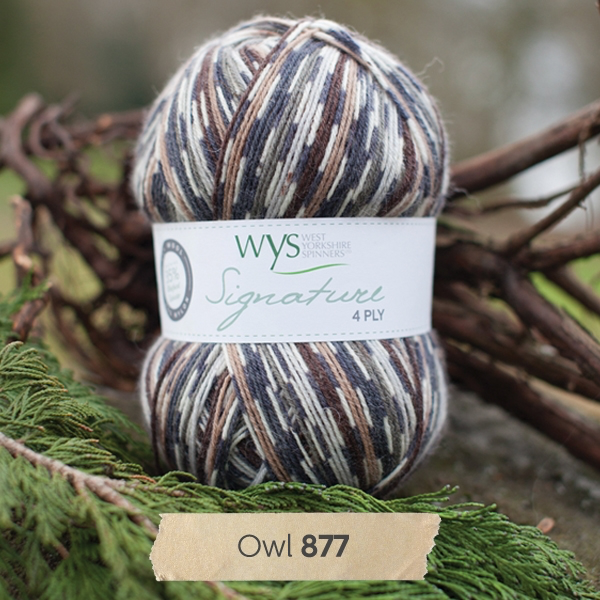 West Yorkshire Spinners Signature 4ply, Owl 877