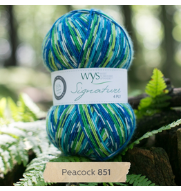 West Yorkshire Spinners Signature 4ply, Peacock 851