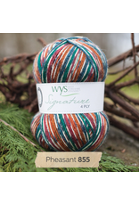 West Yorkshire Spinners Signature 4ply, Pheasant 855