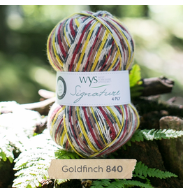 West Yorkshire Spinners Signature 4ply, Goldfinch 840
